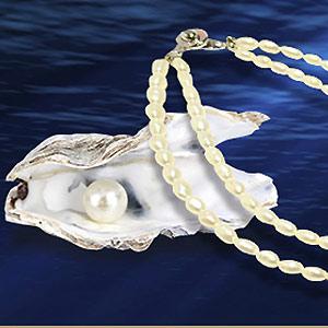 天埜真珠の写真