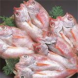 石見 和田珍味の画像